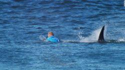 150719124656-01-fanning-shark-attack-super-169